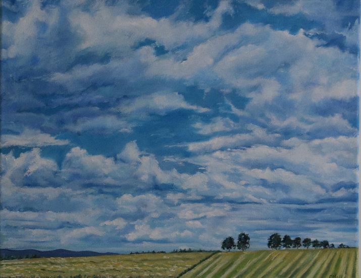 """Big Sky"" Christine McLennan"