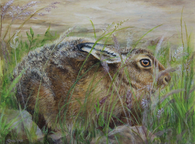 'Form of the Hare' RoselyneO'Neill