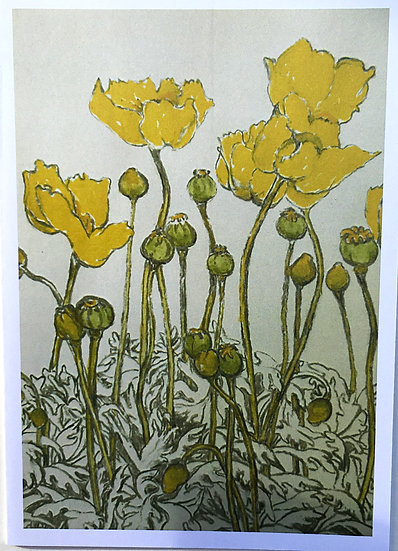 'Yellow Poppies Cards 5 Pack' Anna Sedgwick