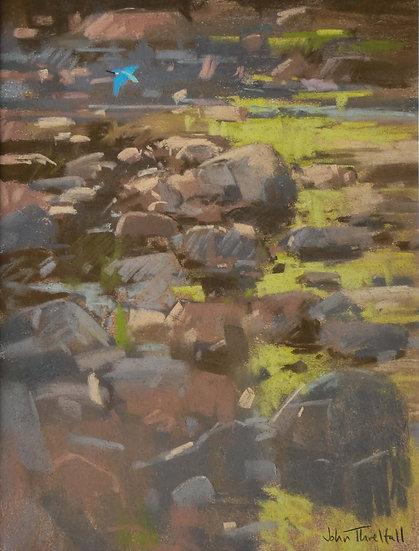 'Kingfisher, Water of Tanar' John Threlfall
