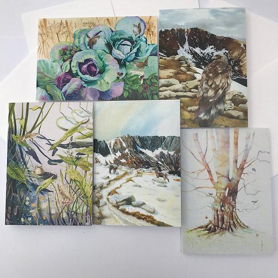 Wild life Cards  Ann Madden