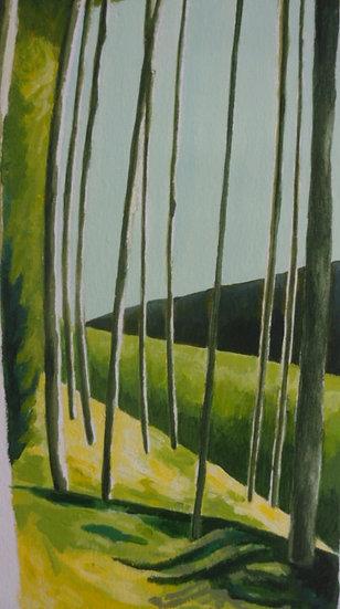 'Pine Grove'  Emma Rodenhurst Grant