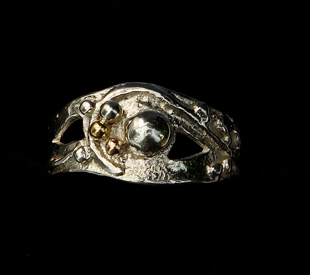 'Silver Gold Ring'  Lorna Purvis