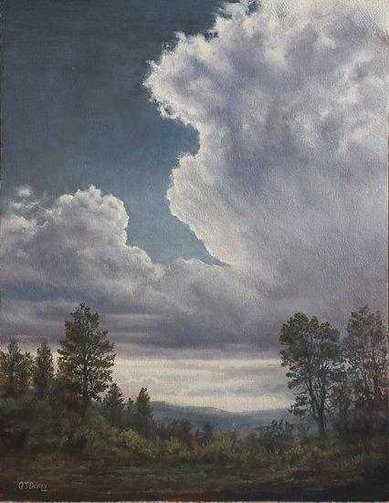 'Hail at Hill of Fare'  Quintin Davies