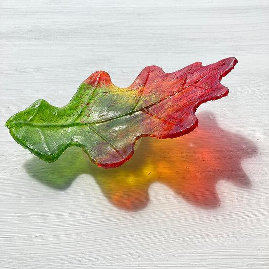 'Oak Leaf' Ashley Brammer