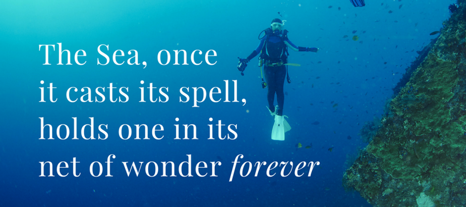 scuba quote.png