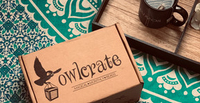 Owlcrate Subscription Box Review!