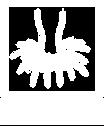 SRB Logo White_edited.png