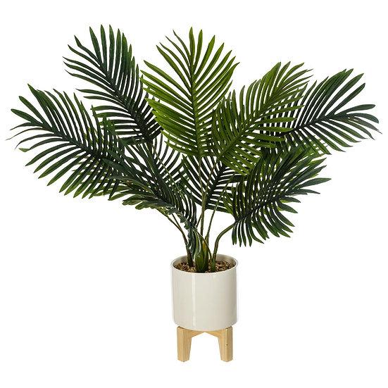 Palma in vaso di ceramica con piedi di legno H72