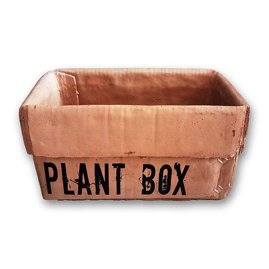 Anthea Plant Box vasi in terracotta a forma di cartone