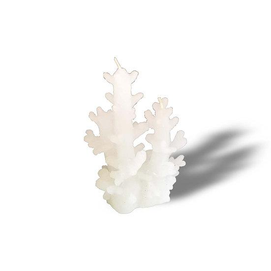 EDG Enzo De Gasperi Candela a forma di corallo in 2 misure