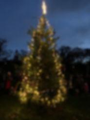 2019 village christmas tree.jpeg