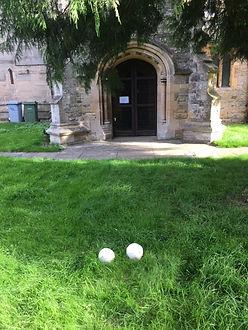 fungi outside the door, .JPG