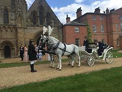 thurgarton wedding horses.jpeg