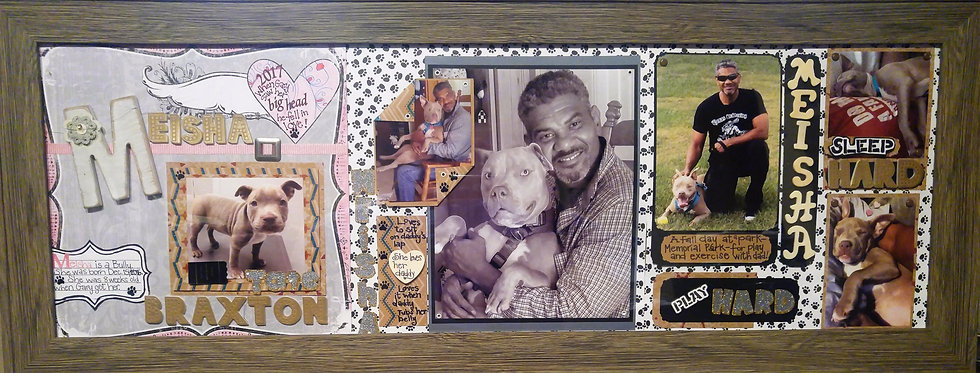 18 x 24 Framed Scrap Booking Pages