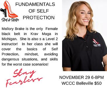 NOVEMBER 29 6-8PM WCCC Belleville (1).png