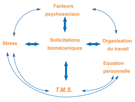 Facteurs psychosociaux et troubles musculosquelettiques (TMS)