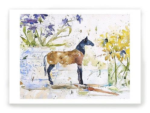 Studio Horse C012
