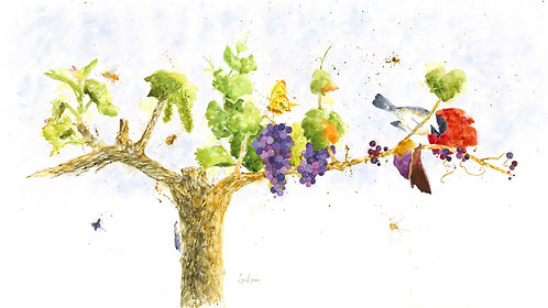 Seasons of the Vine