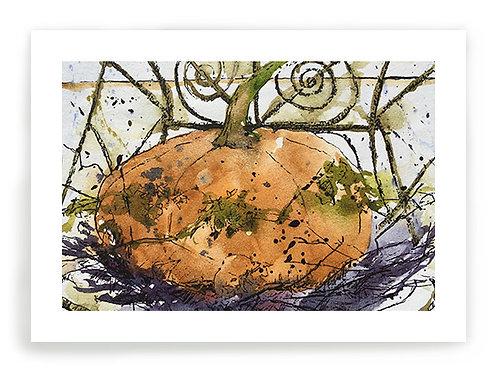 Pumpkin C048
