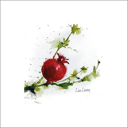 Ornamental Fruit