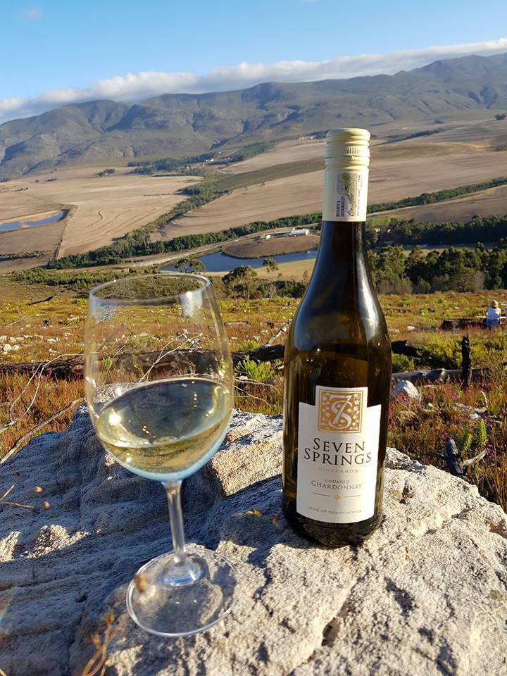 Seven Springs wine South African Chardonnay