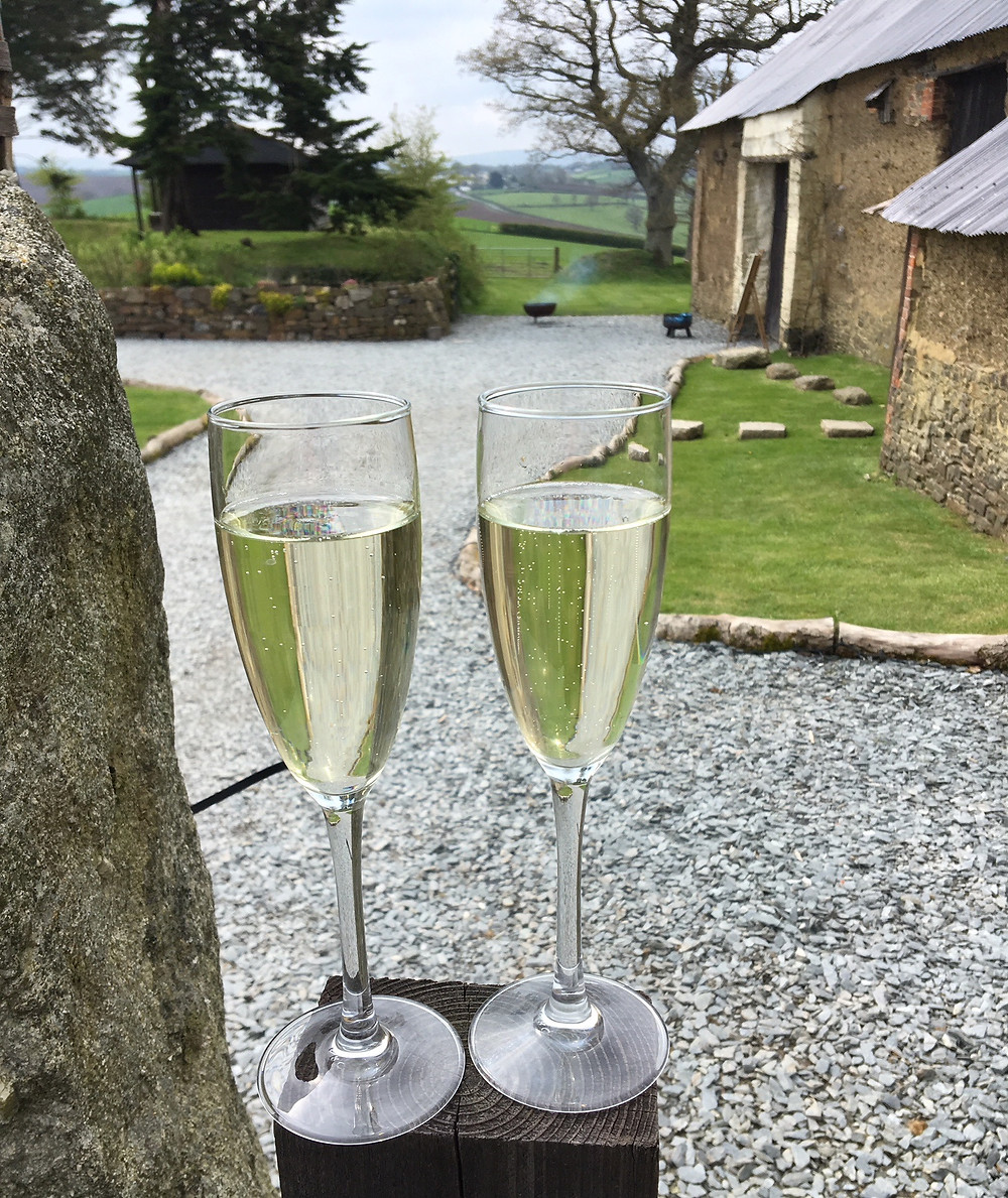 Glasses of champagne for the bride and groom at Eggbeer Farm in Devon