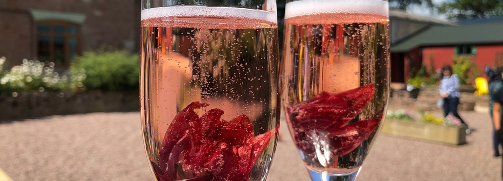 Prosecco with hibiscus flowers.jpg