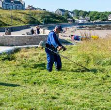 lawn cutting.JPG