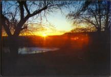 Sunrise at the Four Fools Farm