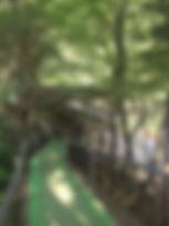 セカンドフロア2.jpg