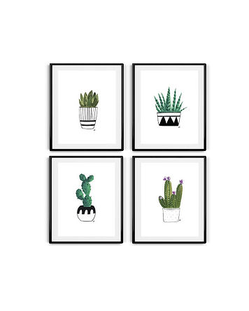 Succulent-sets-amazon.jpg