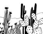 647_Desert.jpg