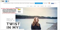 web site nasıl yapılır, web site şablonları (31)