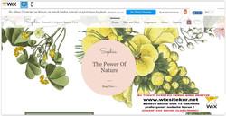 web site nasıl yapılır, web site şablonları (53)