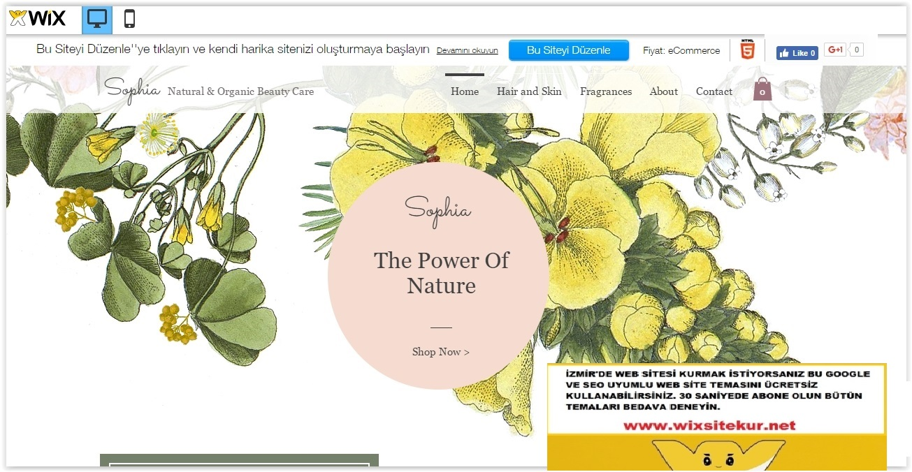 İzmir web tasarım (8)