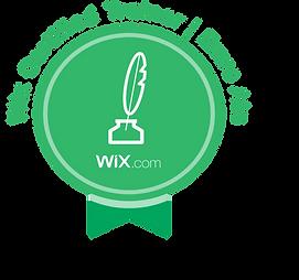 Wix Expert Emre Ata