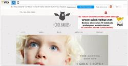 web site nasıl yapılır, web site şablonları (5)