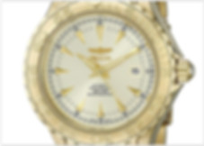 Invicta Men's 2306 Pro-Diver Collection