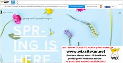 web site nasıl yapılır, web site şablonları (34)
