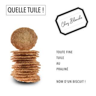QUELLE TUILE!.jpg