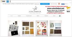 web site nasıl yapılır, web site şablonları (4)