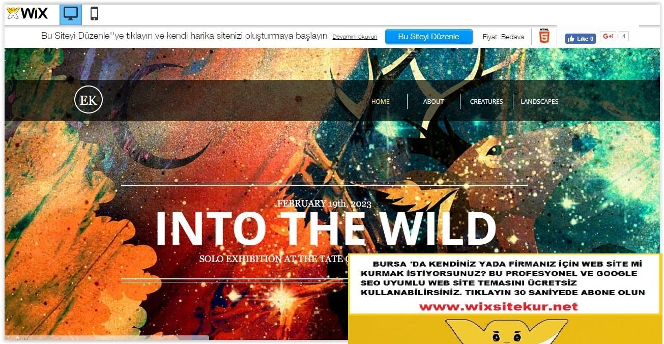 Bursa web tasarım (18)