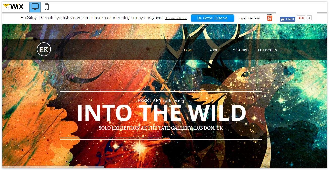 Website şablonları