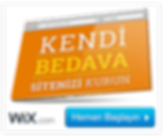 Bedava website kur