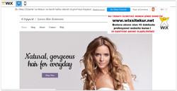 web site nasıl yapılır, web site şablonları (10)
