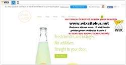 web site nasıl yapılır, web site şablonları (59)