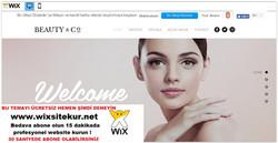 web site nasıl yapılır, web site şablonları (22)