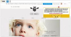 Mersin web tasarım (9)