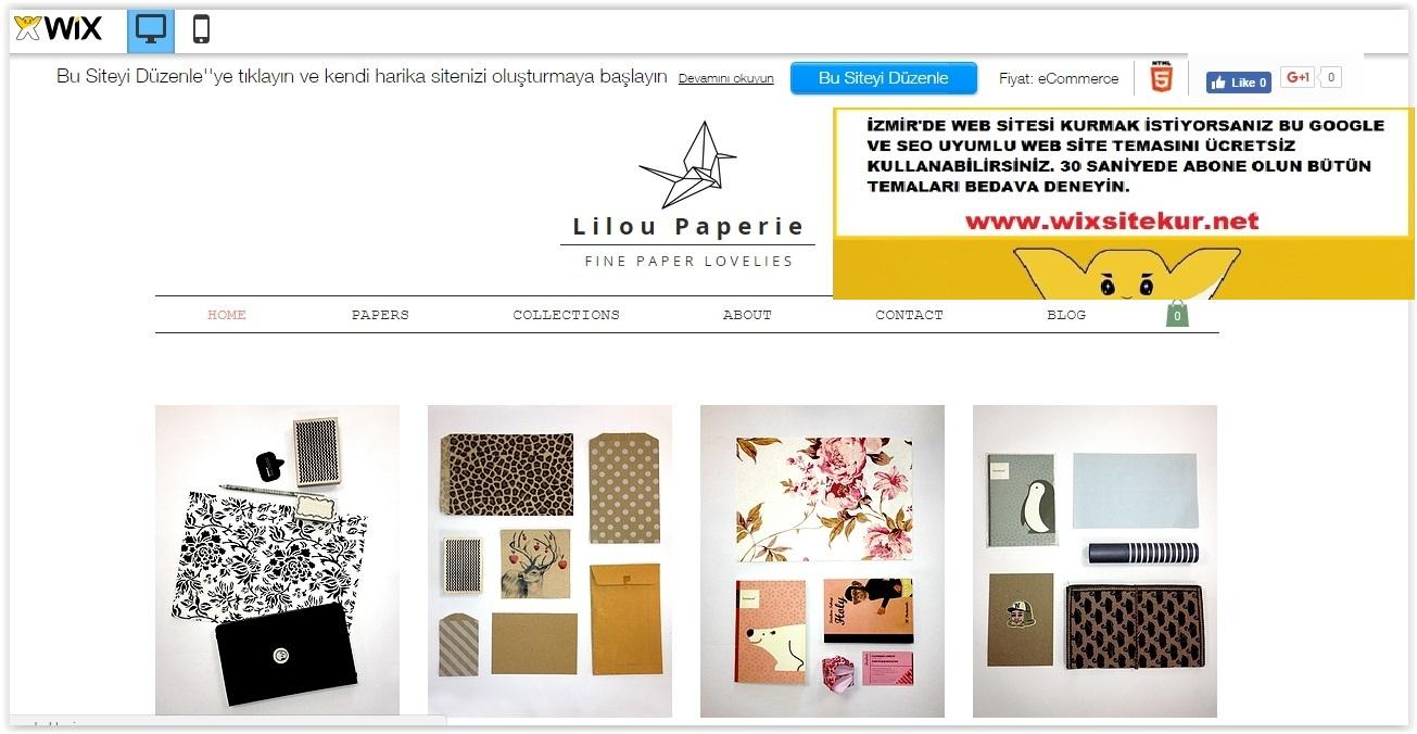 İzmir web tasarım (1)